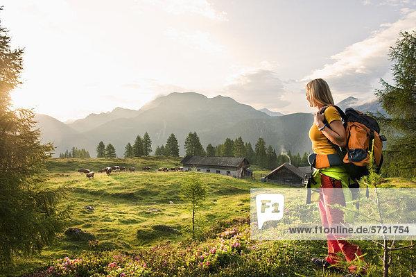Österreich  Salzburger Land  Junge Frau auf der Alm stehend und Landschaft beobachtend Österreich, Salzburger Land, Junge Frau auf der Alm stehend und Landschaft beobachtend