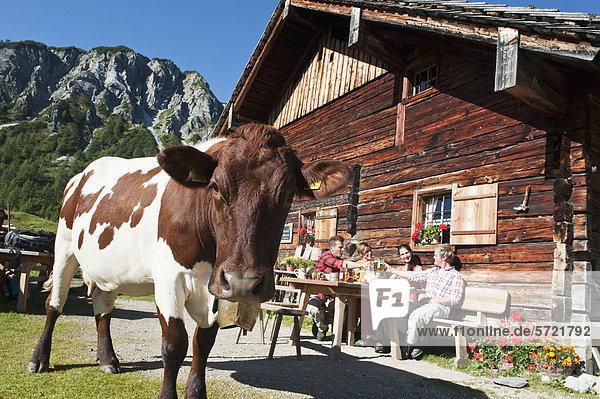 Österreich  Salzburg  Männer und Frauen sitzend und trinkend auf der Almhütte