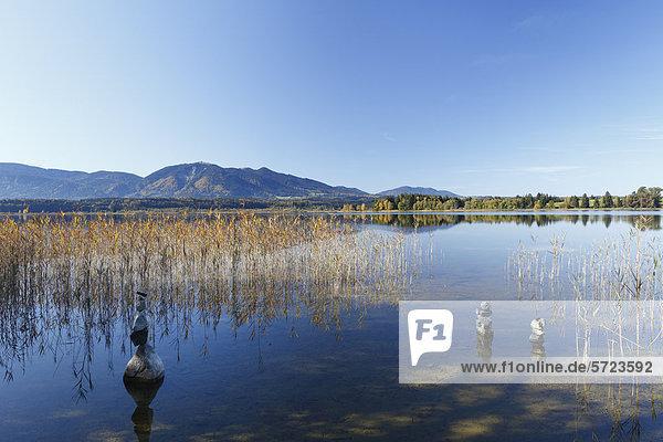 Deutschland  Bayern  Blick auf Berge und Staffelsee