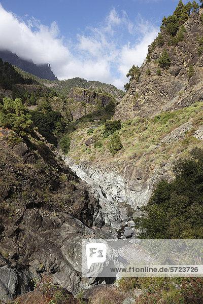 Spanien  La Palma  Blick auf den Nationalpark Caldera de Taburiente