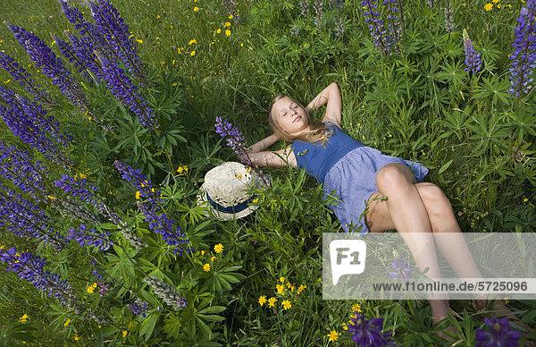 Österreich  Teenagerin entspannt im Lupinenfeld