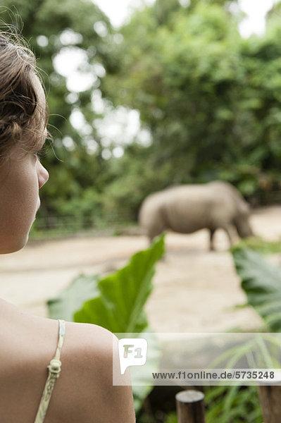 Mädchen beobachten Tier im Zoo  Rückansicht