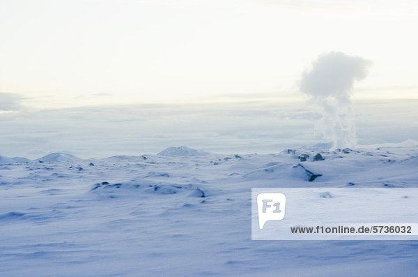 Geothermischer Dampf  Halbinsel Reykjanes  Island