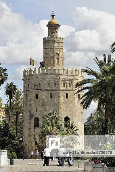Torre del Oro  Goldturm  einst Teil der maurischen Befestigungsanlage  Sevilla  Andalusien  Spanien  Europa