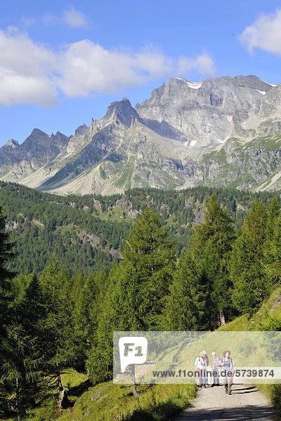 Italy  Piedmont  Alpe Devero natural park