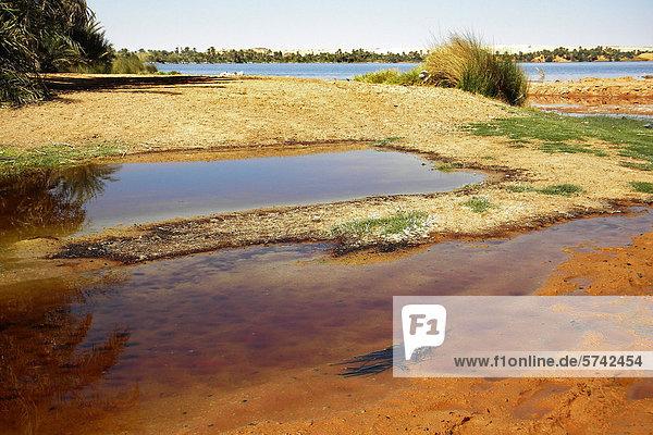 Zweitgrößte Kebir See  Erdi Region  Tschad