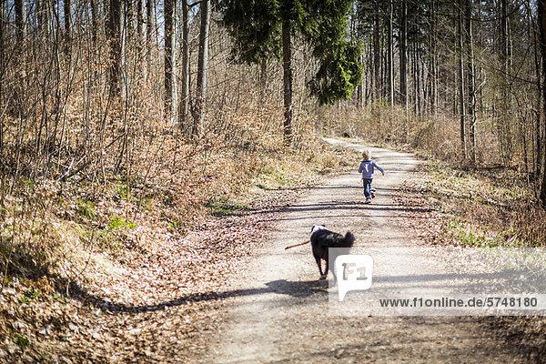 Junge - Person  Weg  Wald  Hund  schmutzig Junge - Person ,Weg ,Wald ,Hund ,schmutzig