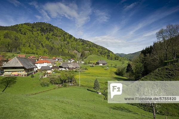 Europa Baden-Württemberg Schwarzwald Deutschland