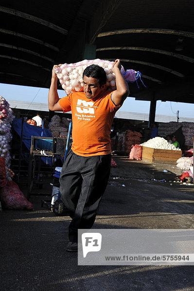 Mann schleppt Sack mit Zwiebeln  CENMA  Gemüsegroßmarkt im Süden von Guatemala Stadt  Guatemala  Mittelamerika