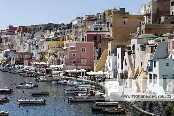 Fishing port of Marina di Corricella  Island of Procida  Gulf of Naples  Campania  Southern Italy  Italy  Europe