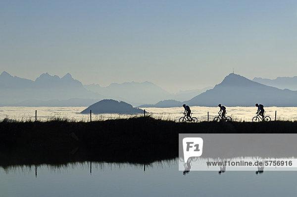 Mountainbiker am Salvensee  Hohe Salve  Kitzbühler Horn  Kitzbühler Alpen  Tirol  Österreich  Europa