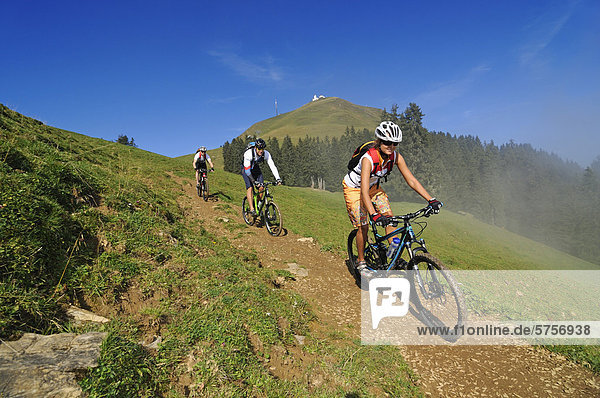 Mountain bikers  Mt Hohe Salve  Kitzbuehel Alps  Tyrol  Austria  Europe
