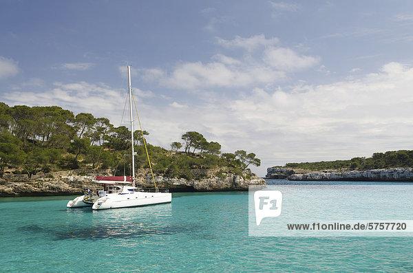 Bucht Cala Montrago  Mallorca  Spanien  Europa