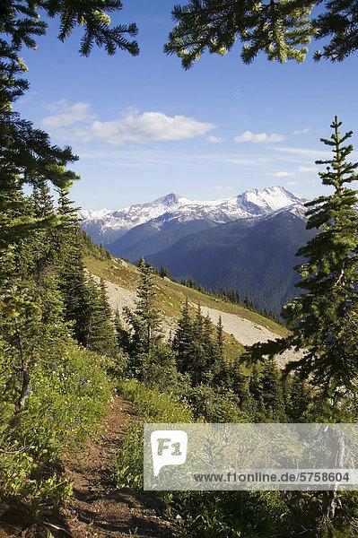 Whistler Hinterland im Sommer bietet einen atemberaubenden Hintergrund für viele Arten von alpine Freizeitaktivitäten wie Wandern und Mountain biken und Trail-Läufer  British Columbia  Kanada.