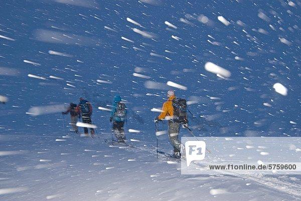 Eine Gruppe von Hinterland Skifahrer in einem Schneesturm auf dem Weg zurück zur Hütte am MacGillivray Pass,  Coast Mountains,  British Columbia,  Kanada.
