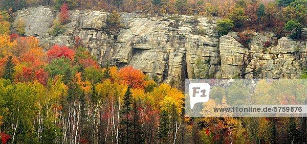 Farbaufnahme Farbe Wald See Herbst vorwärts Parkett Autobahn Kanada Ontario
