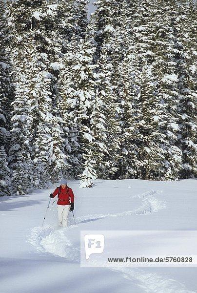 Eine junge weibliche Schneeschuhwanderer genießen ein Wintermorgen walk in Kananaskis Country  Alberta  Kanada