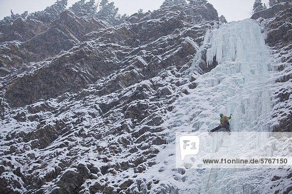 Eine starke weibliche Kletterer Eis klettert Moonlight WI4  auch Thomas Creek  Kananaskis  Alberta  Kanada