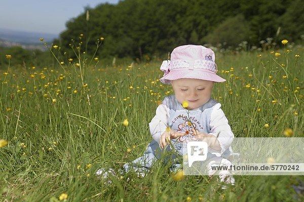 Weibliches Baby sitzt in einer Wiese mit einer Butterblume