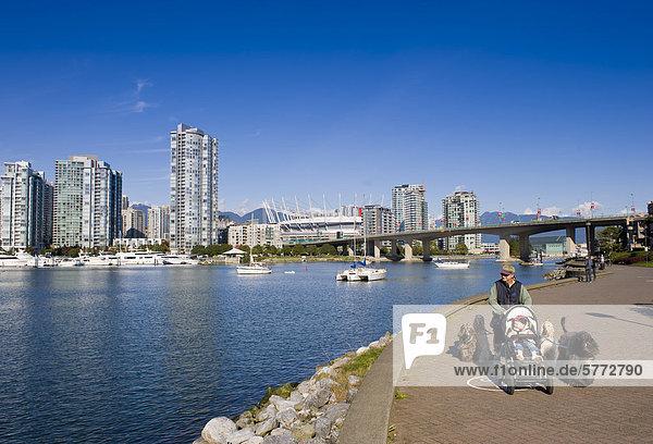 Skyline der Stadt mit neuen Klappdach auf BC Place Stadium  False Creek  Vancouver  British Columbia  Kanada