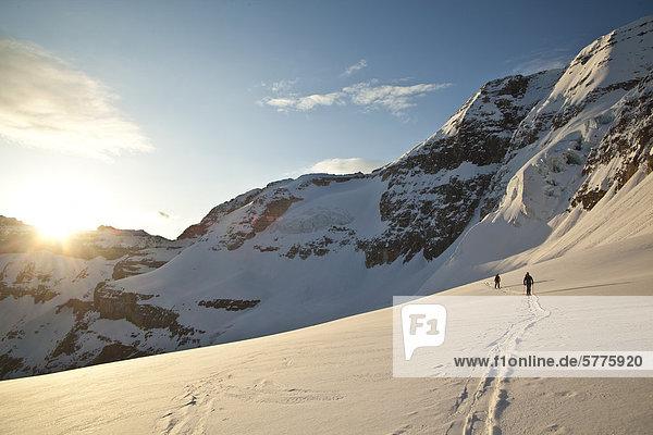 Zwei männliche Hinterland Skifahrer Kopf über einen Gletscher Skifahren North Face von Mt. Stanley  Kootenay Nationalpark  British Columbia  Kanada