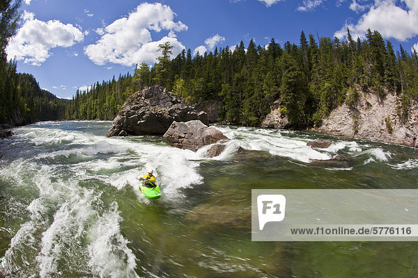Ein junger Mann Paddel eins der vielen Surf Wellen am Clearwater River  Clearwater  Britisch-Kolumbien  Kanada