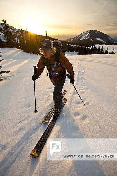 Ein junger Mann-Felle oben am frühen Morgen Ansatz in den Monashee Mountains  British Columbia  Kanada