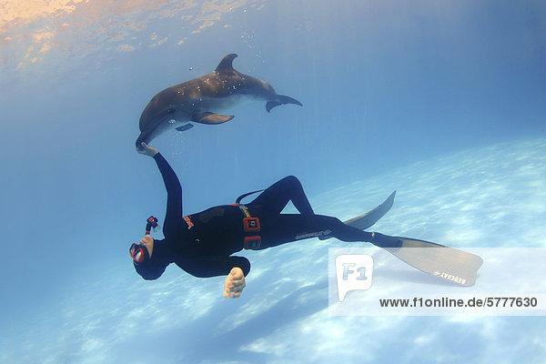 Freediver and Bottlenose Dolphin (Tursiops truncatus)  dolphinarium  Odessa  Ukraine  Eastern Europe