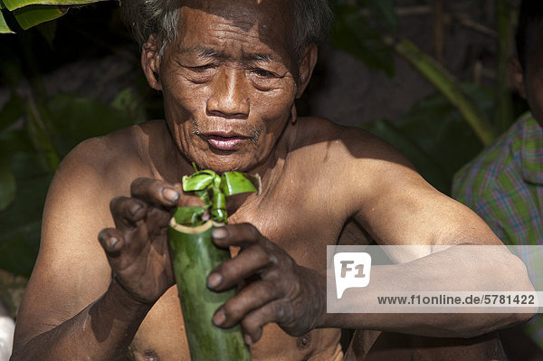 'Elderly man from the Mlabri  Mrabri  Yumbri  Ma Ku or ''Spirits of the Yellow Leaves'' hill tribe  ethnic minority  nomads  cooking in a bamboo tube  Northern Thailand  Thailand  Asia'