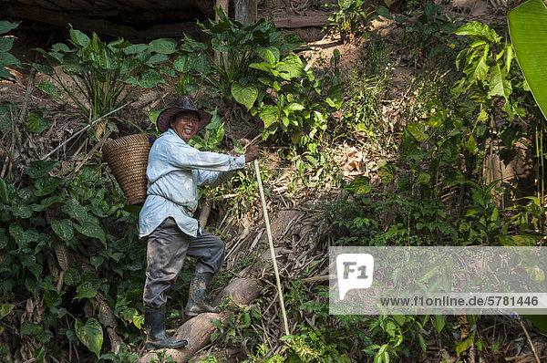 Älterer Mann mit Korb  Führer  aus dem Bergvolk oder Bergstamm der Hmong  ethnische Minderheit  auf dem Wanderweg  Nordthailand  Thailand  Asien