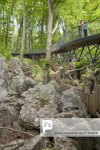 Felsenmeer  Sauerlandpark  Hemer  Sauerland  Nordrhein-Westfalen  Deutschland  Europa