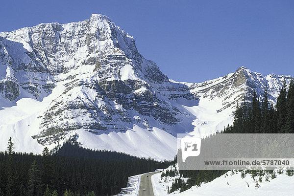 Rocky Mountain Richtung Norden nach Jasper  Icefields Parkway  Alberta  Kanada.