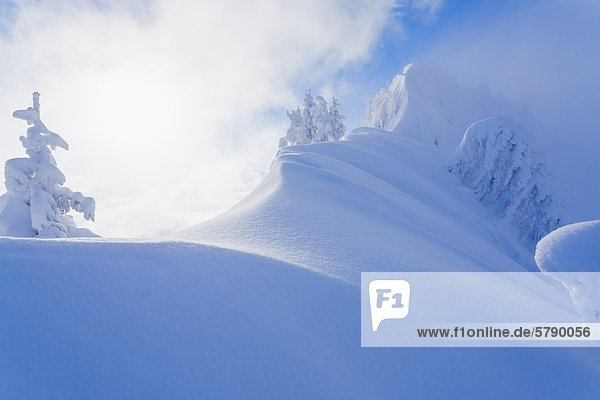 Winterlandschaft auf einem Berggrat  Salzburger Land  Österreich Winterlandschaft auf einem Berggrat, Salzburger Land, Österreich