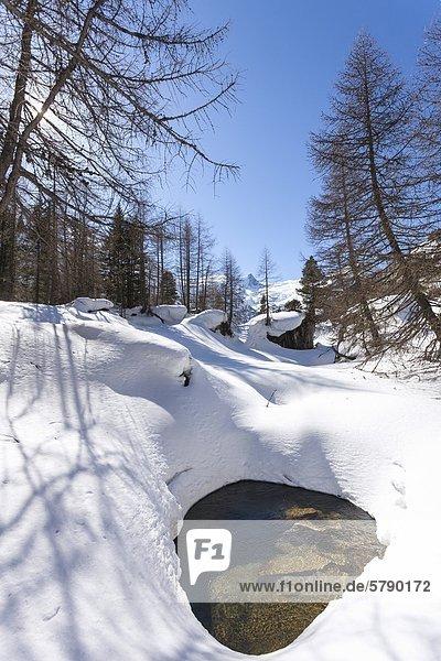 Der verschneite Gschlössbach in der Venedigergruppe  Tirol  Österreich
