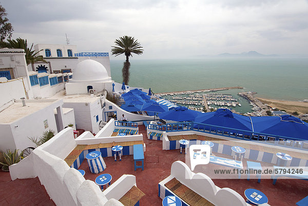 Terrace overlooking Sidi Bou Said  Tunisia  Africa