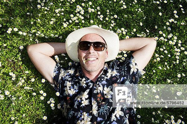 Lächelnder Mann mit Strohhut  Sonnenbrille und Hawaiihemd liegt in einer Blumenwiese und hat ein Gänseblümchen im Mund Lächelnder Mann mit Strohhut, Sonnenbrille und Hawaiihemd liegt in einer Blumenwiese und hat ein Gänseblümchen im Mund