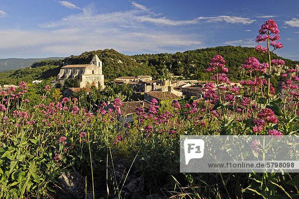 Dorf Saignon  DÈpartement Vaucluse  Region Provence-Alpes-CÙte d'Azur  Frankreich  Europa