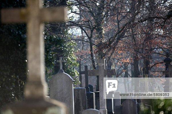 Gräber auf dem Neuen Südfriedhof  München  Bayern  Deutschland