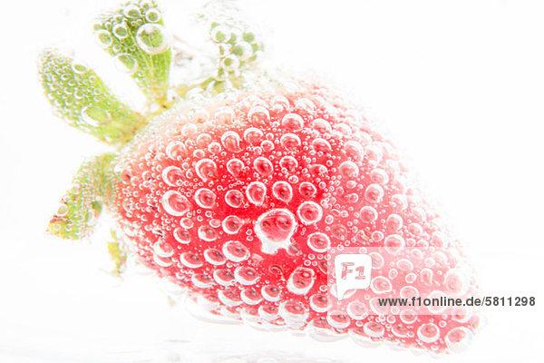Erdbeere in Mineralwasser Erdbeere in Mineralwasser