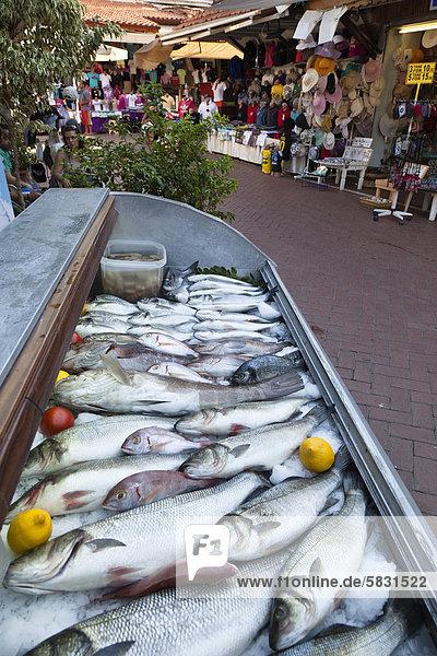 zeigen Fisch Pisces Geschichte Basar Ortsteil Fethiye Türkei lykischen Küste zeigen,Fisch,Pisces,Geschichte,Basar,Ortsteil,Fethiye,Türkei,lykischen Küste