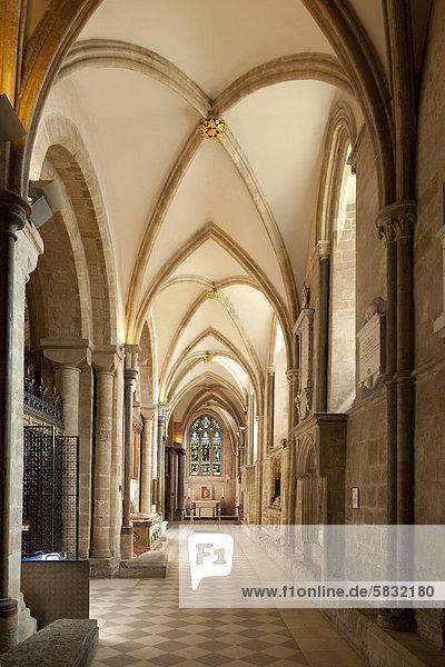 Südliches Seitenschiff der Kathedrale von Chichester  Chichester  West Sussex  England  Großbritannien  Europa