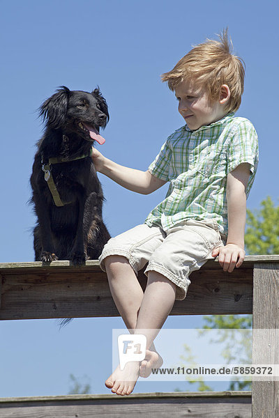 Boy with dog sitting on a fence
