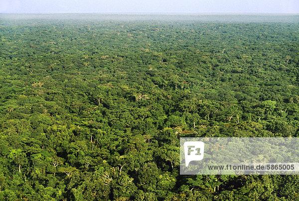 tropischer regenwald antenne kongo demokratische. Black Bedroom Furniture Sets. Home Design Ideas