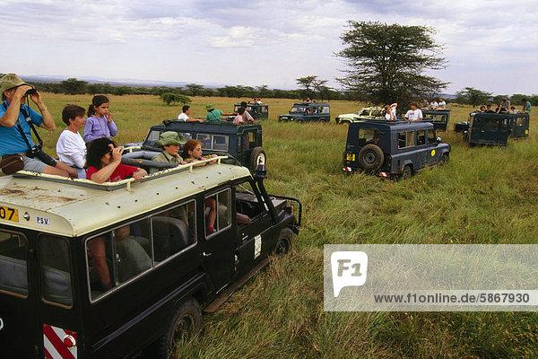 Die Masai Mara ist berühmt für ihre Tierwelt.