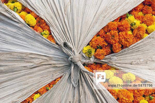 Ringelblumen-Blüten  Blumenmarkt  Howrah Bridge  Kolkata oder Kalkutta  Westbengalen  Ostindien  Indien  Asien