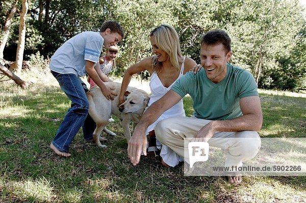 Hund  Mittelpunkt  2  Erwachsener  spielen