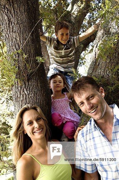 hinter  Portrait  lächeln  Baum  Mittelpunkt  Erwachsener