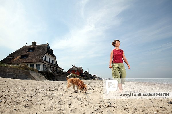 Woman with dog on beach in Graswarder  Schleswig-Holstein  Germany