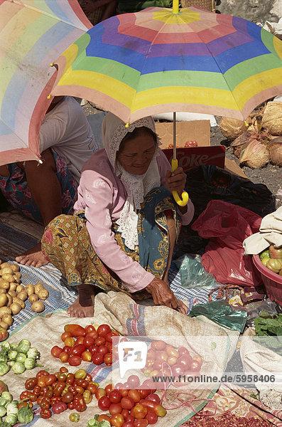 Eine Frau  sitzend auf dem Boden  halten einen gestreiften Schirm als ein Sonnenschirm  Tomaten und anderes Gemüse auf einem Markt verkaufen Toraja Region  Sulawesi  Indonesien  Südostasien  Asien