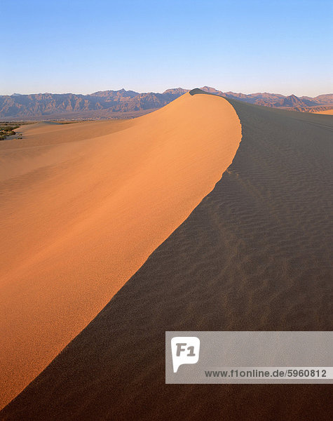 Sand dunes  Death Valley National Monument  California  United States of America  North America
